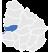 ico-rio negro