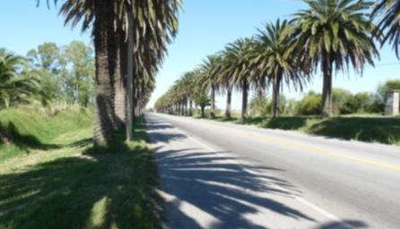 Corredor Vial Circuito 7